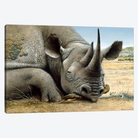 Black Rhino Canvas Print #9291} by Harro Maass Canvas Art