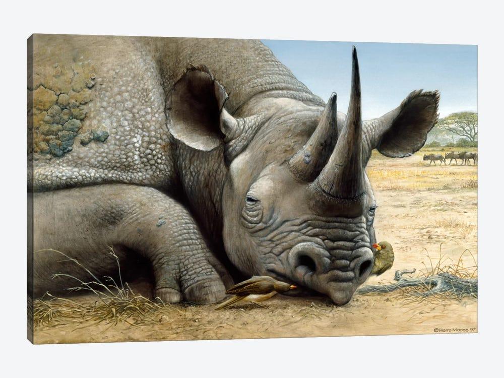 Black Rhino by Harro Maass 1-piece Canvas Art
