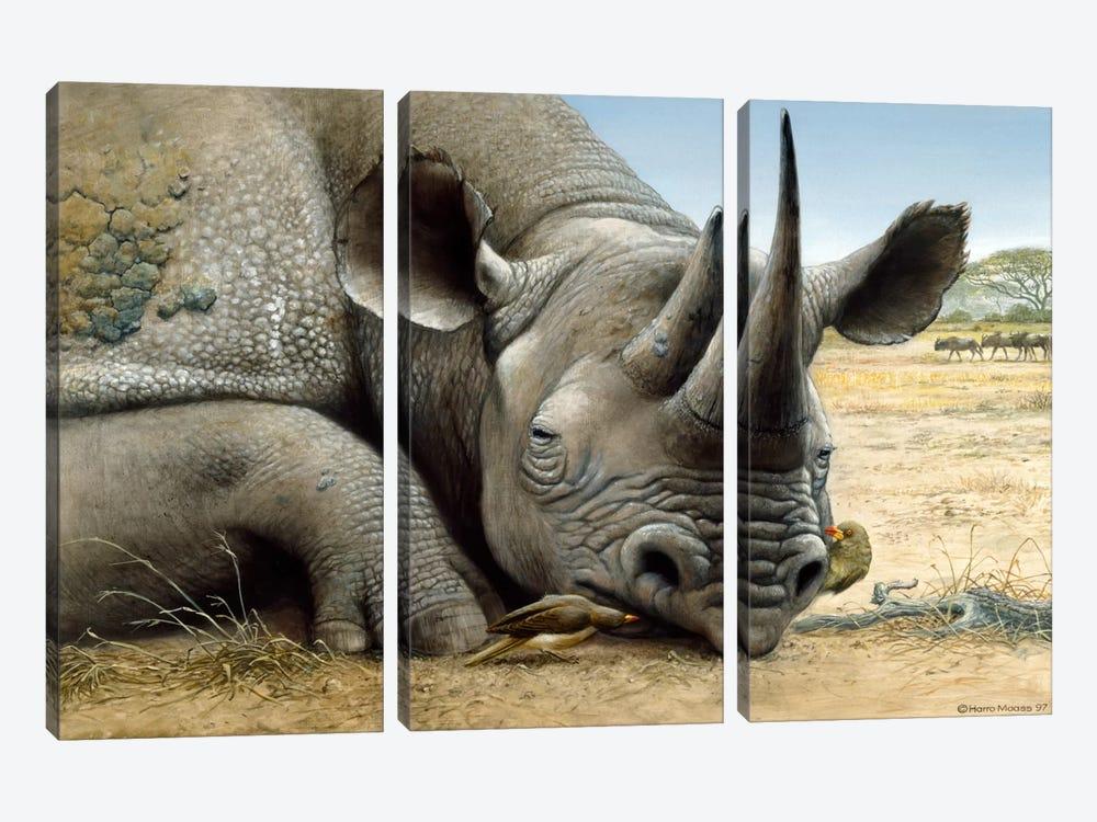 Black Rhino by Harro Maass 3-piece Canvas Art