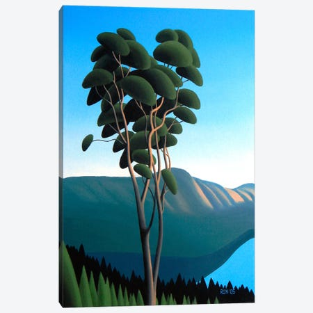 Hillside Arbutus Canvas Print #9323} by Ron Parker Canvas Wall Art