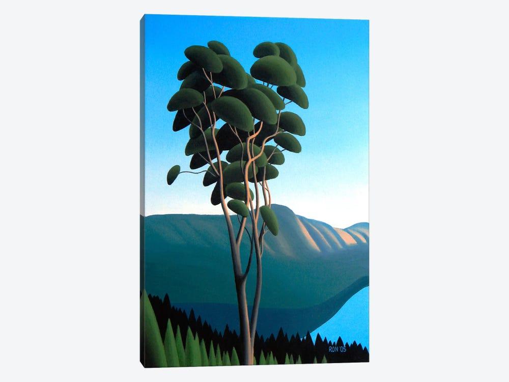 Hillside Arbutus by Ron Parker 1-piece Canvas Artwork