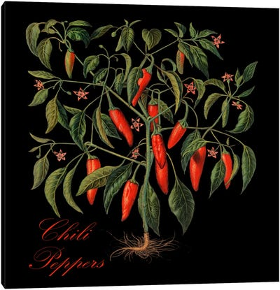 Chili Peppers Canvas Art Print