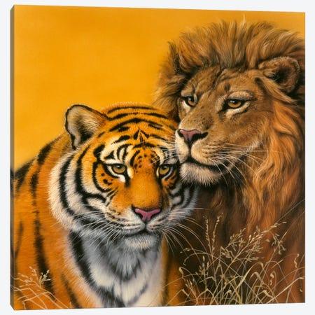Lion & Tiger Canvas Print #9344} by Harro Maass Canvas Print