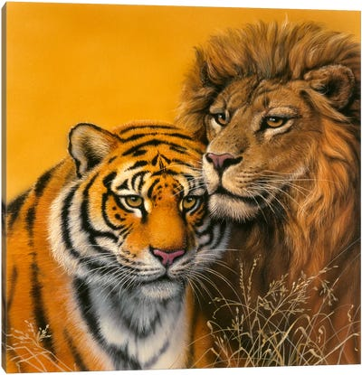 Lion & Tiger Canvas Art Print