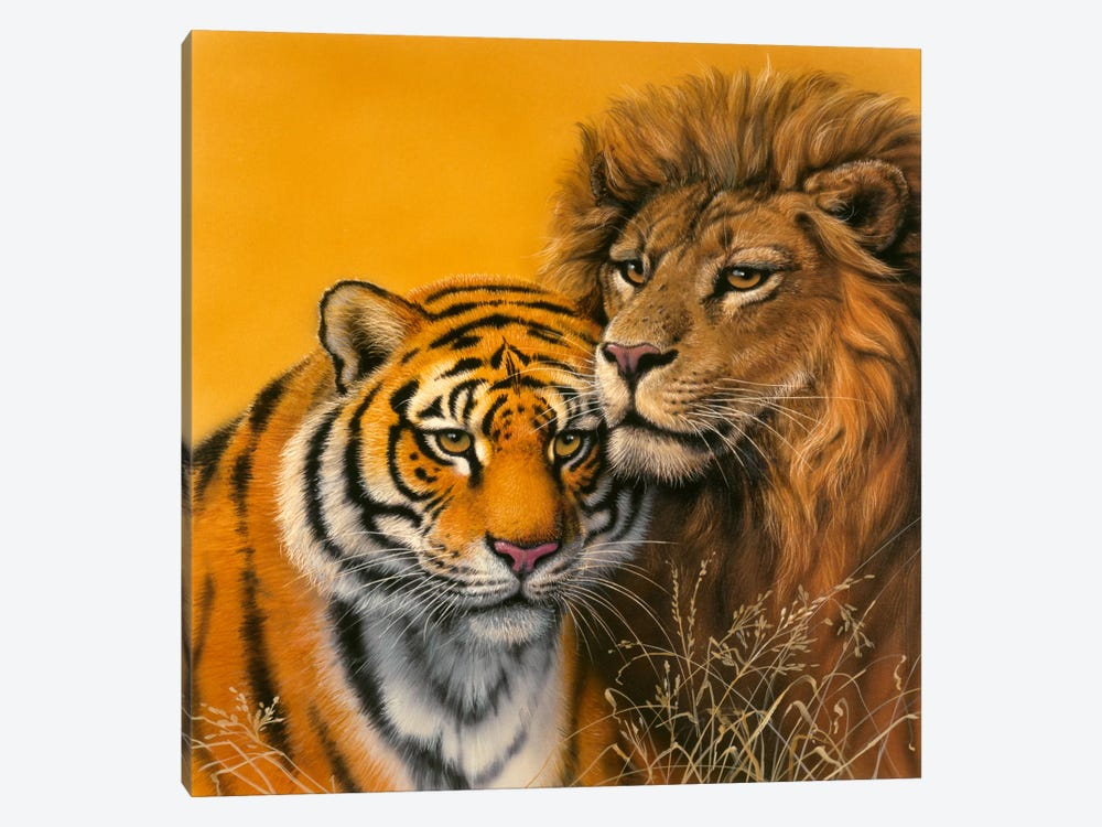 Lion & Tiger by Harro Maass 1-piece Canvas Print