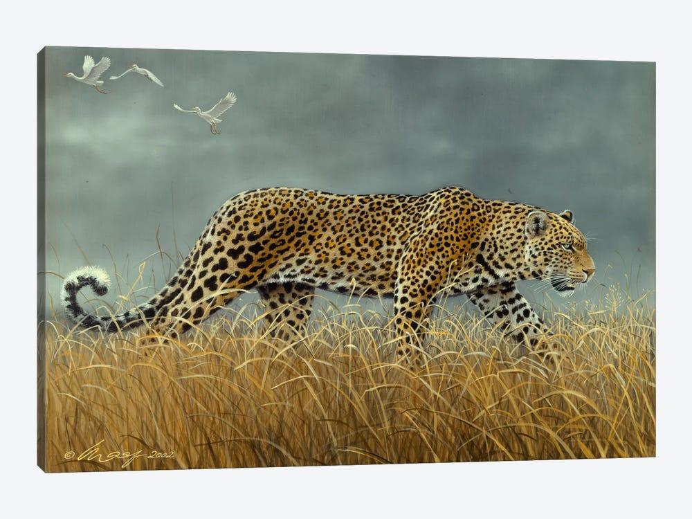 Leopard 2 by Harro Maass 1-piece Canvas Art