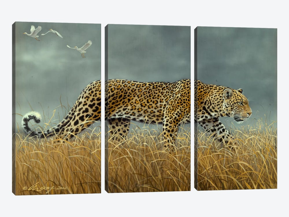 Leopard 2 by Harro Maass 3-piece Canvas Wall Art