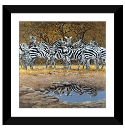Zebras Framed Art Print