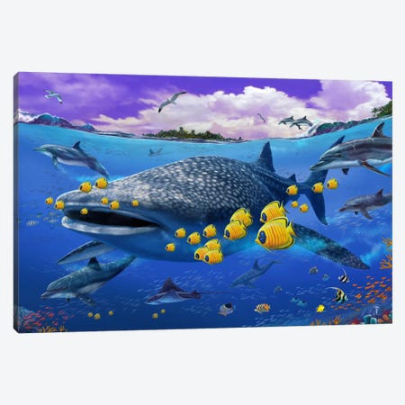 Shark/Dolphin Canvas Print #9364} by Lorenzo Tempesta Canvas Print