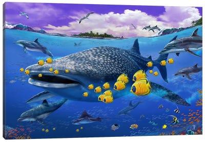 Shark/Dolphin Canvas Art Print