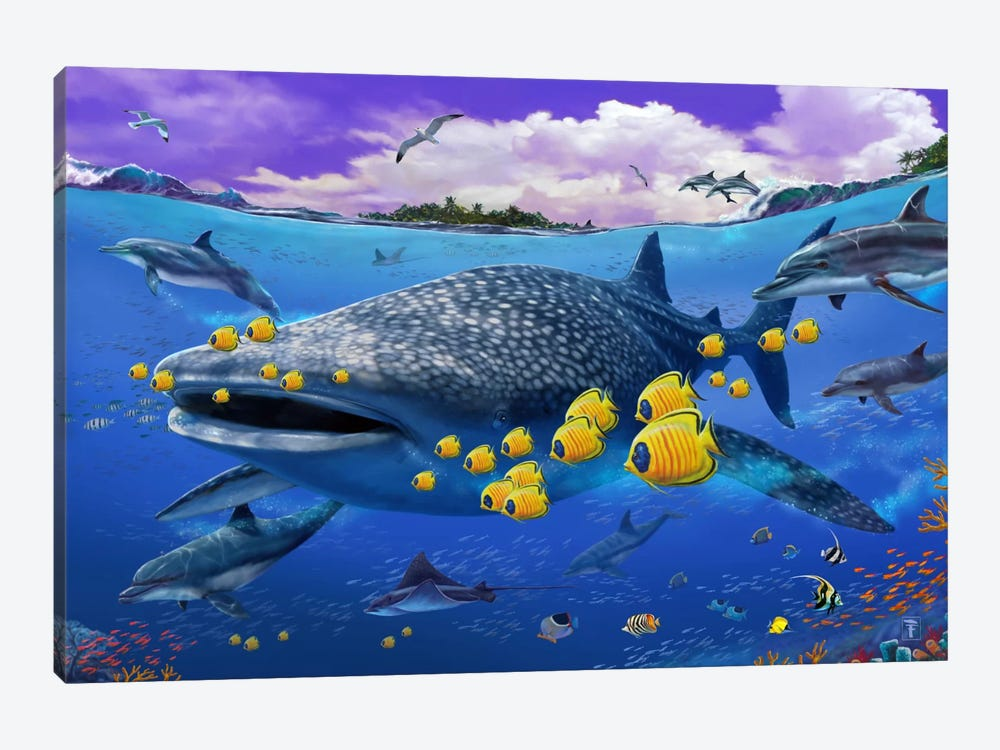 Shark/Dolphin by Lorenzo Tempesta 1-piece Canvas Print