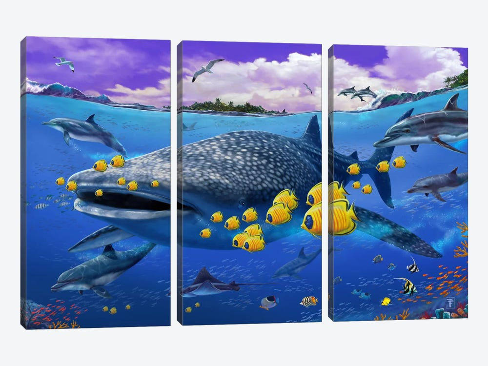 Shark/Dolphin by Lorenzo Tempesta 3-piece Art Print