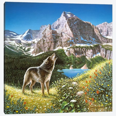 Alpine Chorus Canvas Print #9372} by John Van Straalen Canvas Art Print