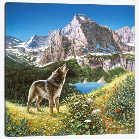 Alpine Chorus Canvas Print #9372} by John Van Straalen Canvas Art Print