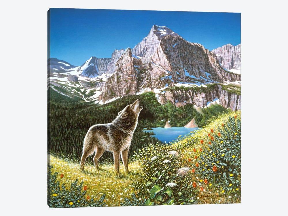 Alpine Chorus by John Van Straalen 1-piece Canvas Art