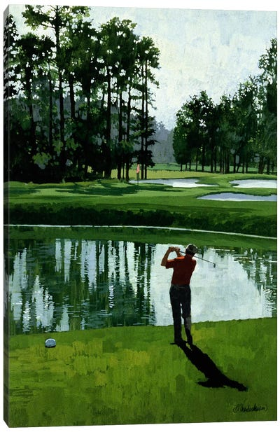 Golf Course 9 by William Vanderdasson Canvas Art