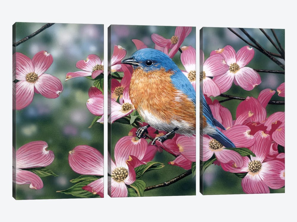 Bluebird/Pink Dogwood by William Vanderdasson 3-piece Art Print
