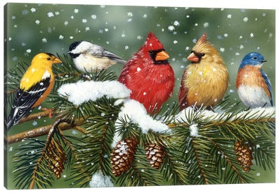 Backyard Birds on Snowy Branch Canvas Art Print