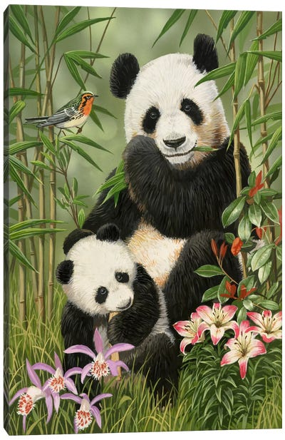 Panda Paradise by William Vanderdasson Canvas Art