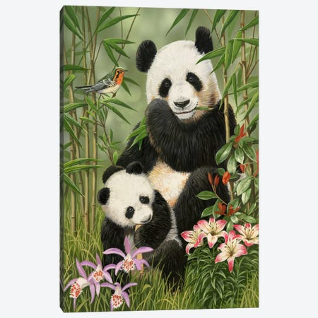 Panda Paradise Canvas Print #9383} by William Vanderdasson Canvas Art