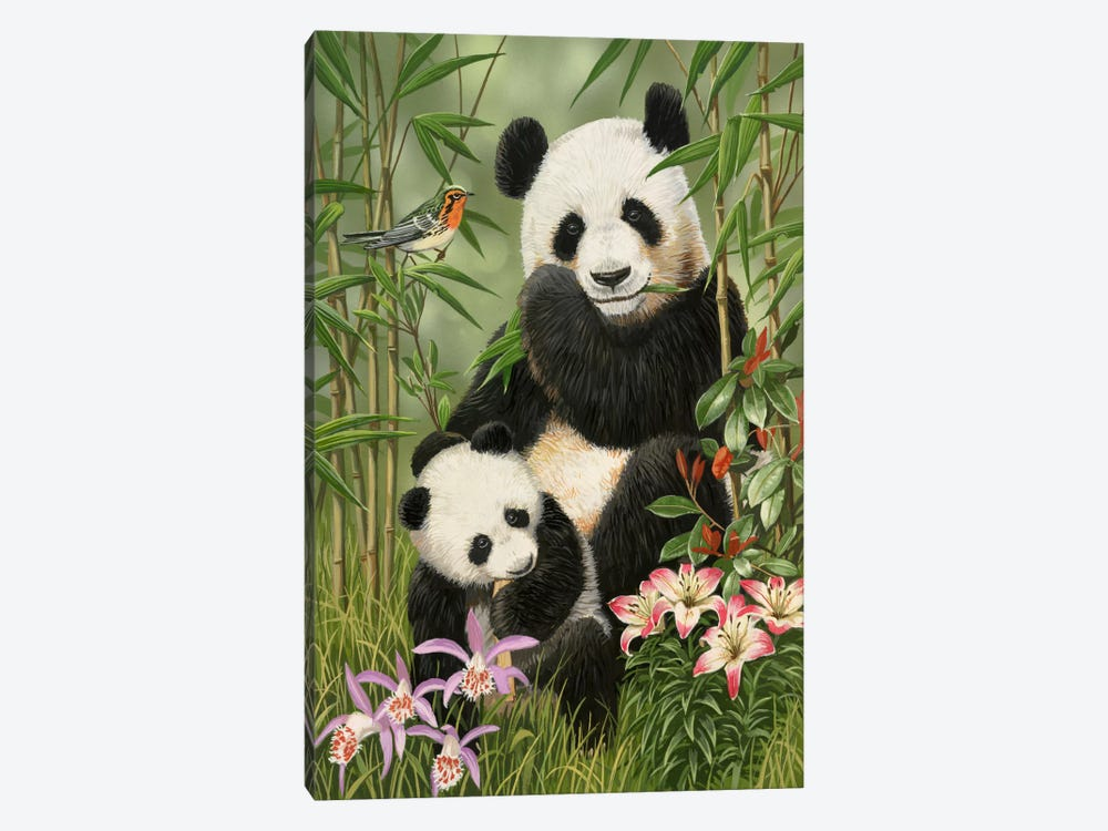 Panda Paradise by William Vanderdasson 1-piece Canvas Art
