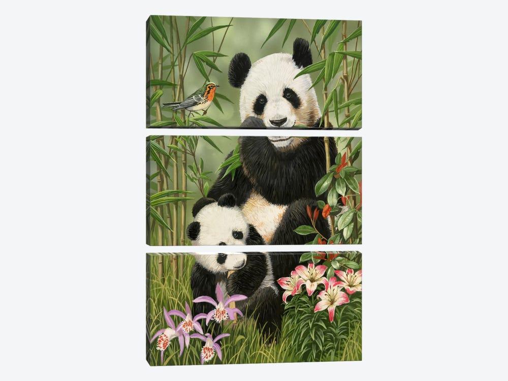 Panda Paradise by William Vanderdasson 3-piece Canvas Wall Art