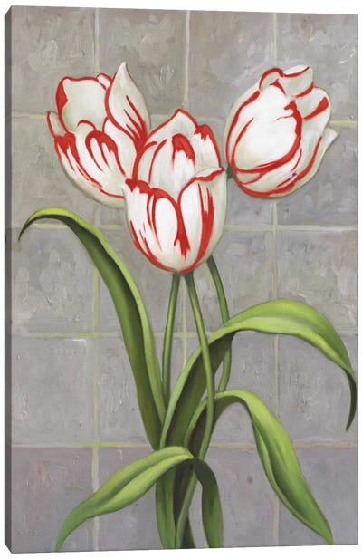 Red-Striped Tulips Canvas Art Print