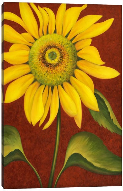Sunflower Canvas Print #9426