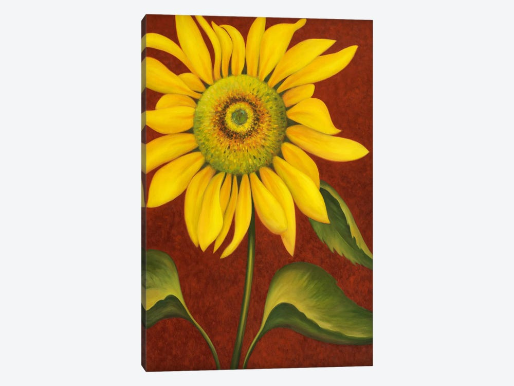 Sunflower by John Zaccheo 1-piece Canvas Art