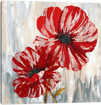 Red Poppies II from Willow Way StudiosInc collection Canvas Art Print