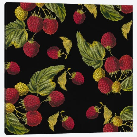 Nature's Bounty - Raspberries Canvas Print #9501} by Mindy Sommers Canvas Artwork