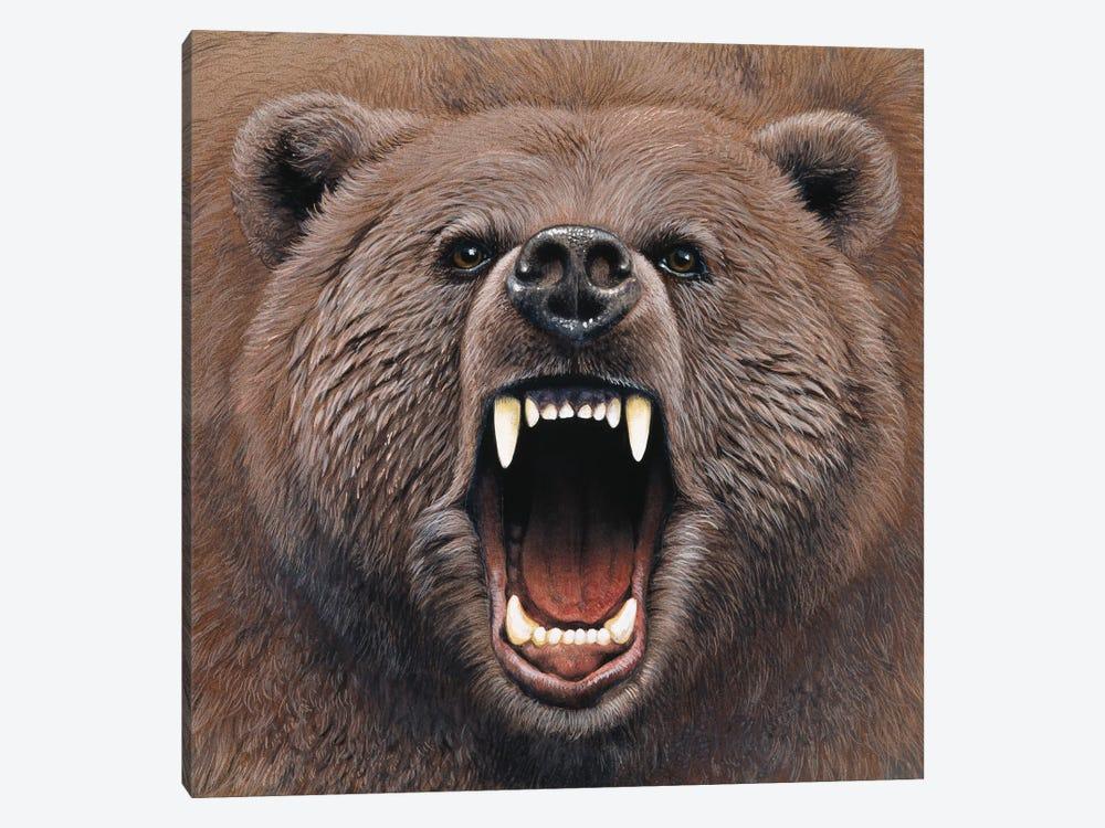 Bear 2 by Harro Maass 1-piece Canvas Art Print