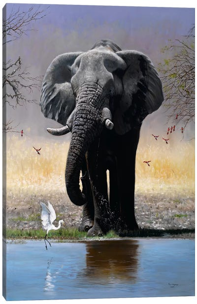Elephant, Egret & Carmines Canvas Art Print