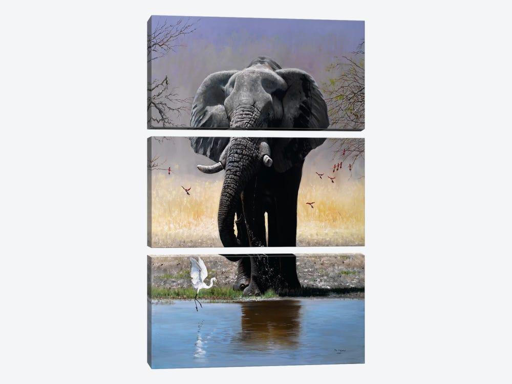Elephant, Egret & Carmines by Pip McGarry 3-piece Canvas Wall Art
