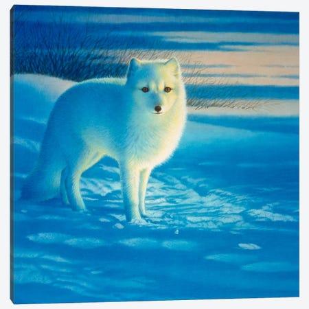 The Pupil Canvas Print #9576} by John Natito Canvas Wall Art