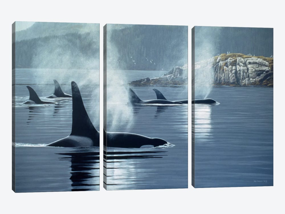 Morning Mist by Ron Parker 3-piece Canvas Wall Art