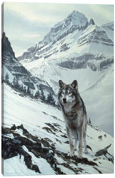 Winter Crossing - Wolf Canvas Art Print