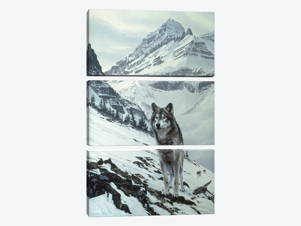 Winter Crossing - Wolf by Ron Parker 3-piece Canvas Art Print