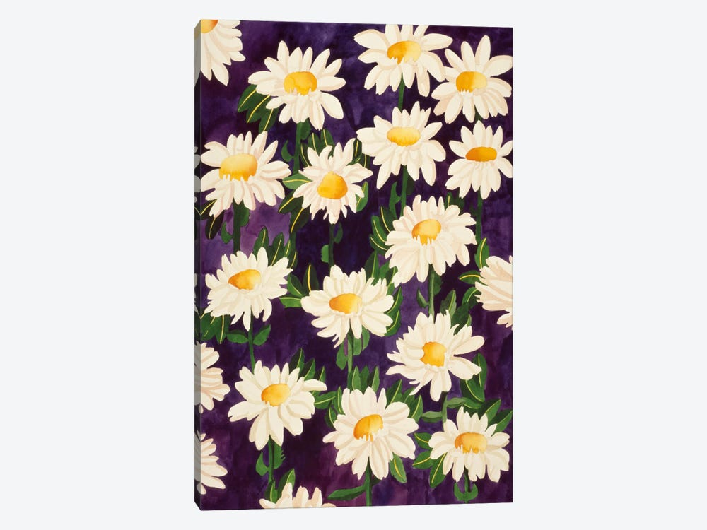 Shasta Daisies by Mary Russell 1-piece Canvas Print