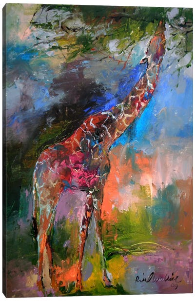 Giraffe Canvas Art Print