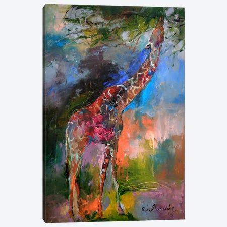 Giraffe Canvas Print #9622} by Richard Wallich Art Print