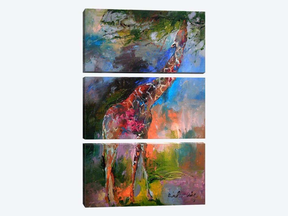 Giraffe by Richard Wallich 3-piece Canvas Art Print