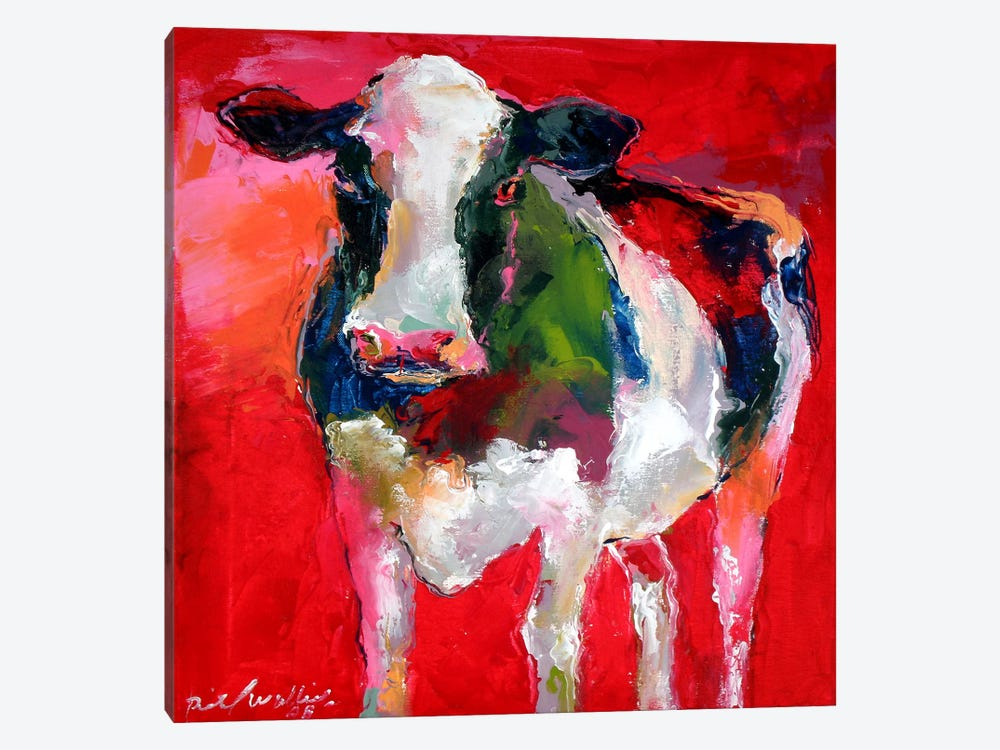 Cow Canvas Print By Richard Wallich Icanvas