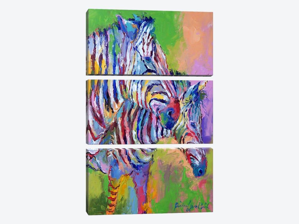 Zebra by Richard Wallich 3-piece Canvas Artwork