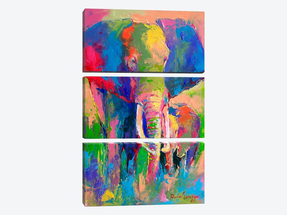 Elephant by Richard Wallich 3-piece Canvas Print