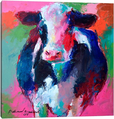Cow II Canvas Art Print