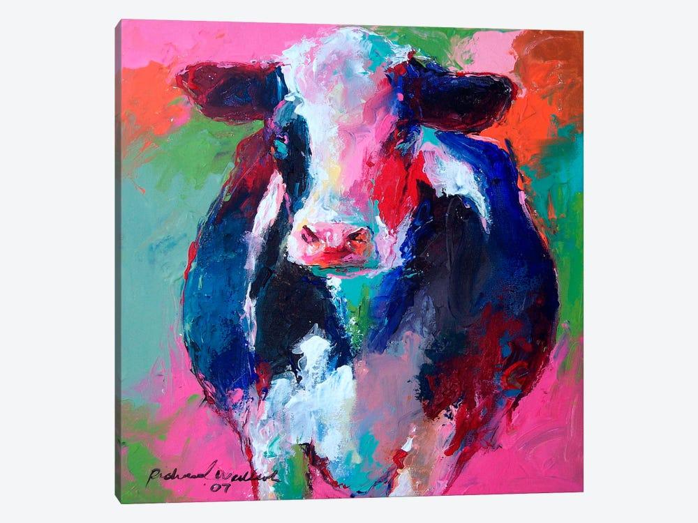 Cow II by Richard Wallich 1-piece Canvas Art