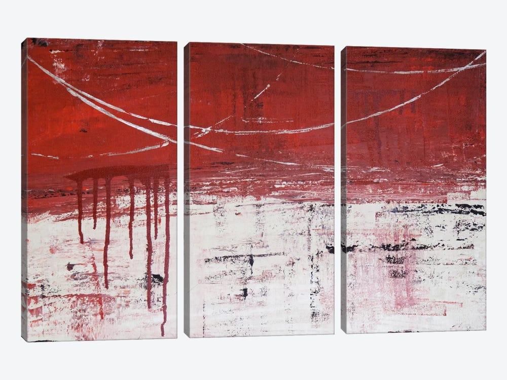Lithoshpere XXXXIV by Hilary Winfield 3-piece Canvas Print