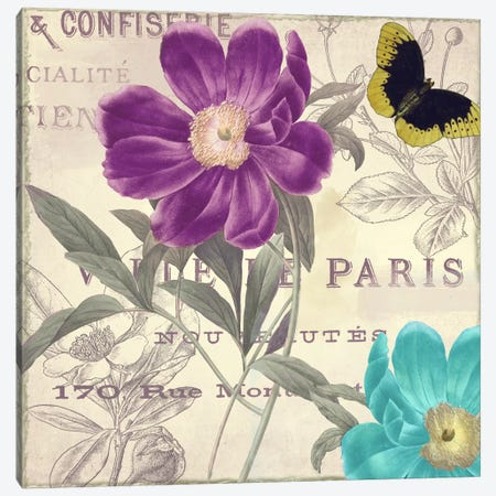 Petals of Paris II Canvas Print #9669} by Color Bakery Canvas Art Print