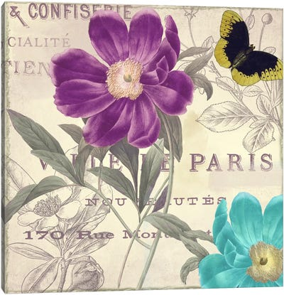 Petals of Paris II Canvas Print #9669